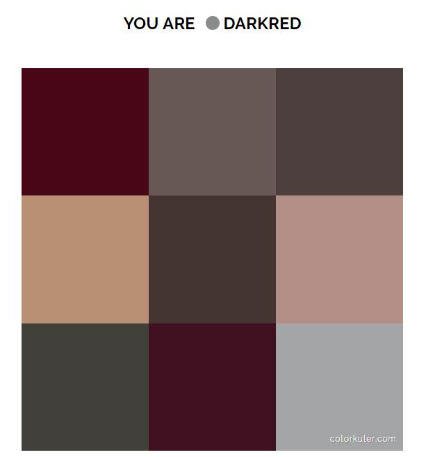 Инструмент Colourkuler поможет определить основной цвет Инстаграм аккаунта